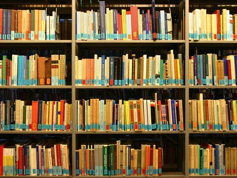 Könyvtáros, művelődésszervező álláshirdetés