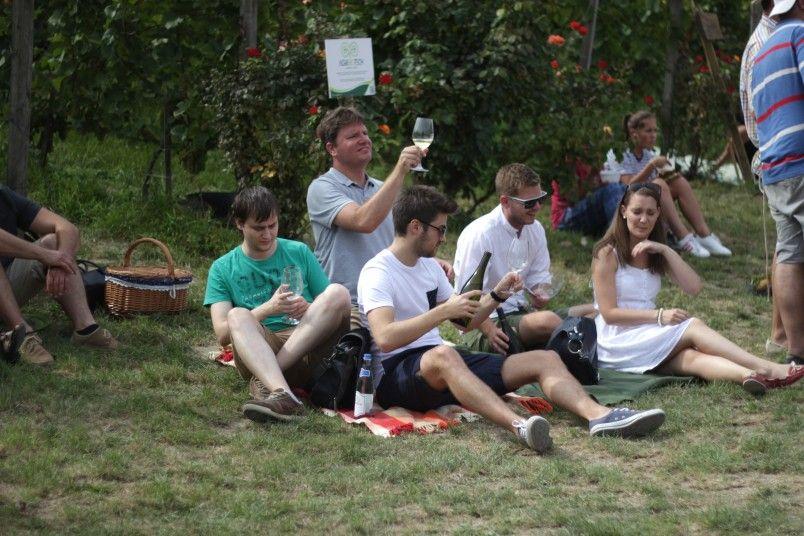 Nyár esti zenés piknik parti