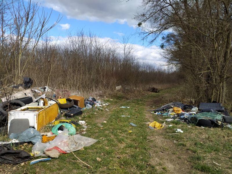 Illegális hulladék gyűjtés
