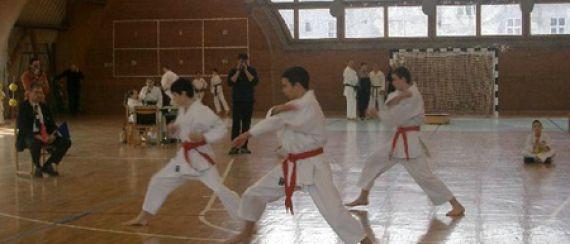 Táplán: Karate Sportegyesület