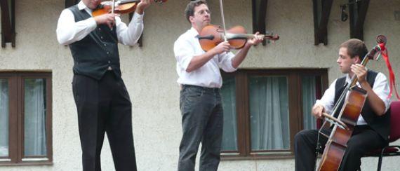Májusfa-kitáncolás (2009.05.31.)