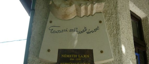 Németh Lajos emléknap (2009.06.21.)
