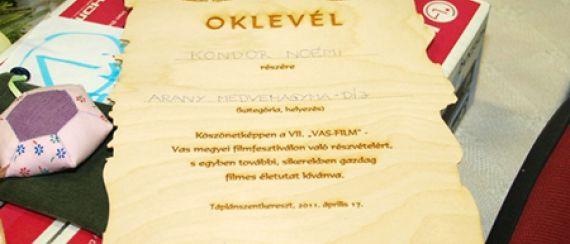 VII. VAS-FILM (2011. április 16-17.)